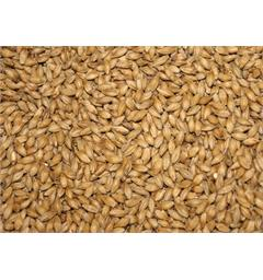 Acidulated Malt (Syremalt) 4 EBC / 2 L